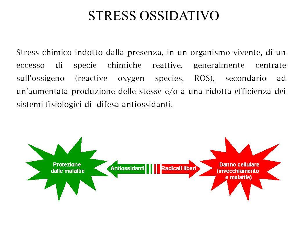 STRESS OSSIDATIVO Stress chimico indotto dalla presenza, in un organismo vivente, di un eccesso di specie chimiche reattive, generalmente centrate sul