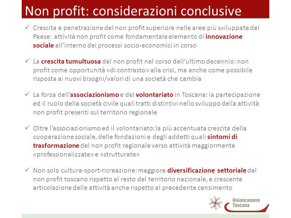 Non profit: considerazioni conclusive Crescita e penetrazione del non profit superiore nelle aree più sviluppate del Paese: attività non profit come f