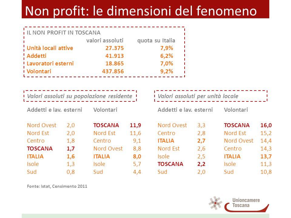 Non profit: le dimensioni del fenomeno IL NON PROFIT IN TOSCANA valori assolutiquota su Italia Unità locali attive27.3757,9% Addetti41.9136,2% Lavoratori esterni18.8657,0% Volontari437.8569,2% Addetti e lav.