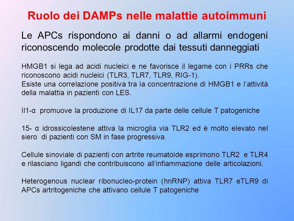 Ruolo dei DAMPs nelle malattie autoimmuni Le APCs rispondono ai danni o ad allarmi endogeni riconoscendo molecole prodotte dai tessuti danneggiati HMG