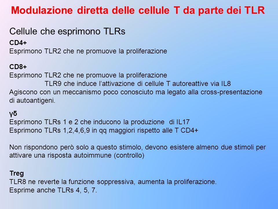 Modulazione diretta delle cellule T da parte dei TLR Cellule che esprimono TLRs CD4+ Esprimono TLR2 che ne promuove la proliferazione CD8+ Esprimono T