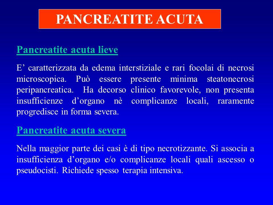PANCREATITE ACUTA Pancreatite acuta lieve E caratterizzata da edema interstiziale e rari focolai di necrosi microscopica. Può essere presente minima s
