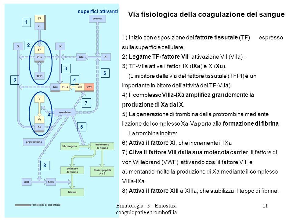 5 8 4 4 superfici attivanti Via fisiologica della coagulazione del sangue 1) Inizio con esposizione del fattore tissutale (TF) espresso sulla superfic