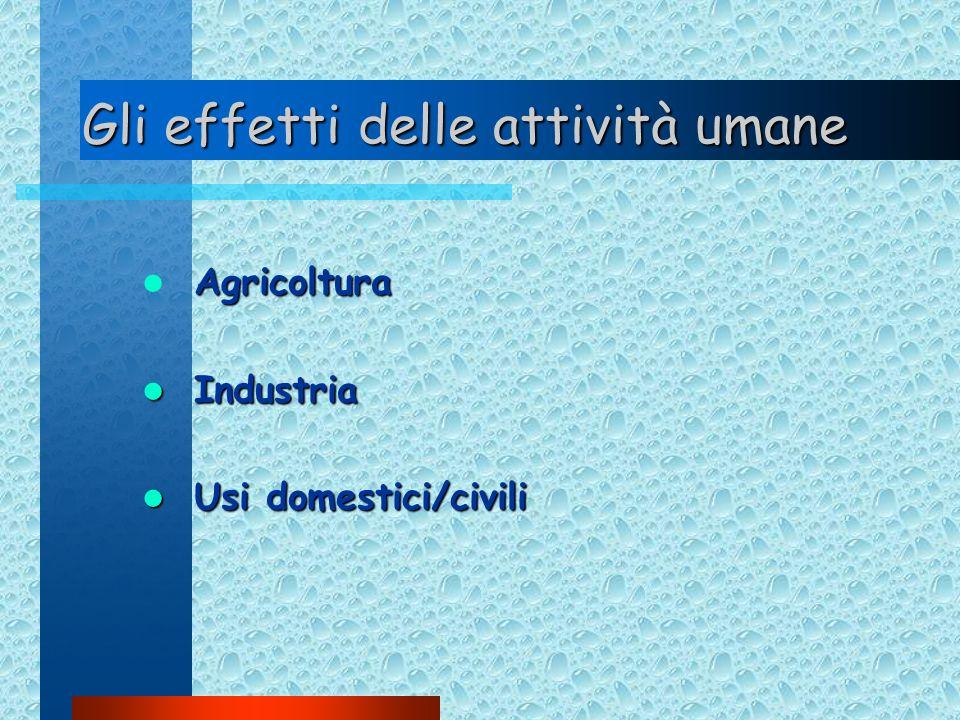 Gli effetti delle attività umane Agricoltura Industria Industria Usi domestici/civili Usi domestici/civili