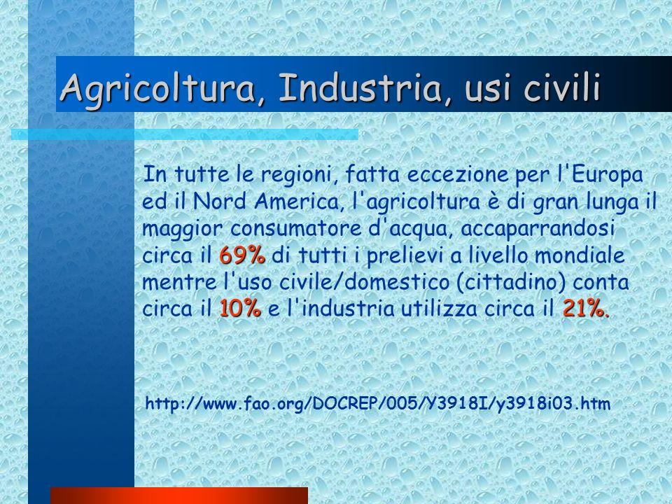 Agricoltura, Industria, usi civili 69% 10%21%. In tutte le regioni, fatta eccezione per l'Europa ed il Nord America, l'agricoltura è di gran lunga il