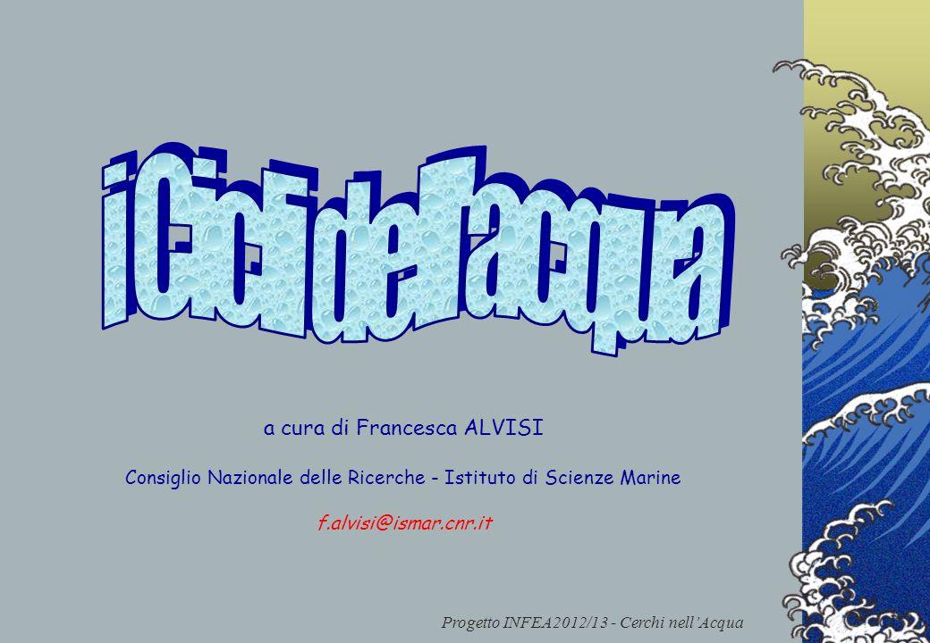 Progetto INFEA2012/13 - Cerchi nellAcqua a cura di Francesca ALVISI Consiglio Nazionale delle Ricerche - Istituto di Scienze Marine f.alvisi@ismar.cnr