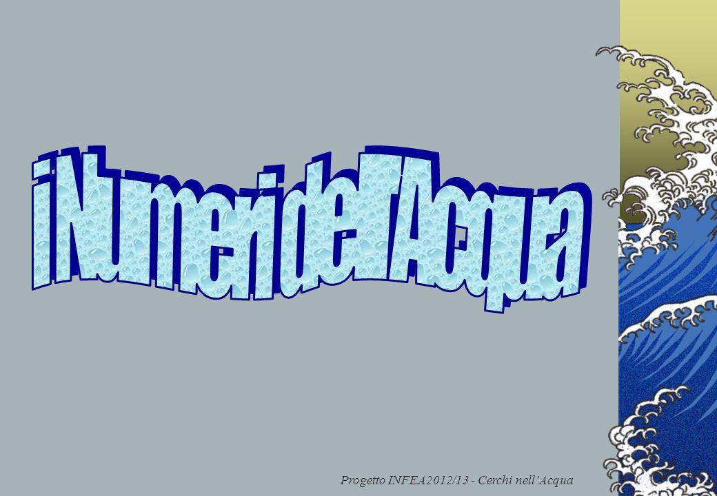 Progetto INFEA2012/13 - Cerchi nellAcqua