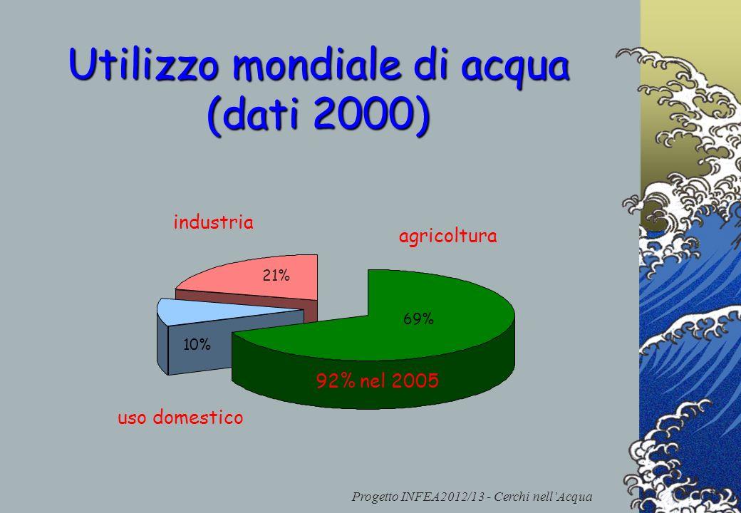 Progetto INFEA2012/13 - Cerchi nellAcqua 21% Utilizzo mondiale di acqua (dati 2000) industria uso domestico agricoltura 10% 69% 92% nel 2005