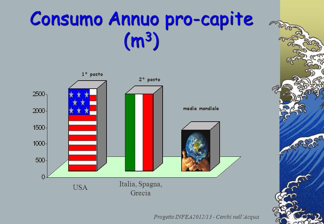 Progetto INFEA2012/13 - Cerchi nellAcqua Consumo Annuo pro-capite (m 3 ) 1° posto 2° posto USA Italia, Spagna, Grecia media mondiale