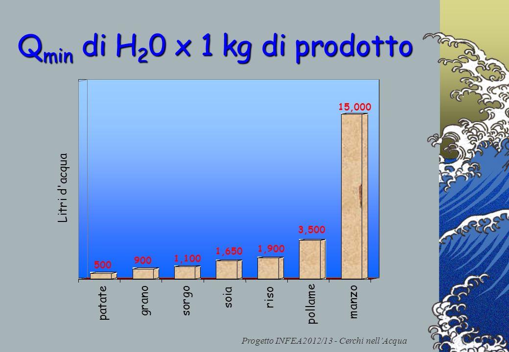 Progetto INFEA2012/13 - Cerchi nellAcqua 500 900 1,100 1,650 1,900 3,500 15,000 patate grano sorgo soia riso pollame manzo Litri d'acqua Q min di H 2