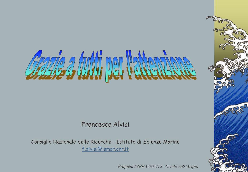 Progetto INFEA2012/13 - Cerchi nellAcqua Francesca Alvisi Consiglio Nazionale delle Ricerche - Istituto di Scienze Marine f.alvisi@ismar.cnr.it