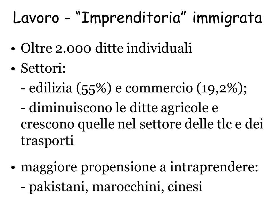 Lavoro - Imprenditoria immigrata Oltre 2.000 ditte individuali Settori: - edilizia (55%) e commercio (19,2%); - diminuiscono le ditte agricole e cresc