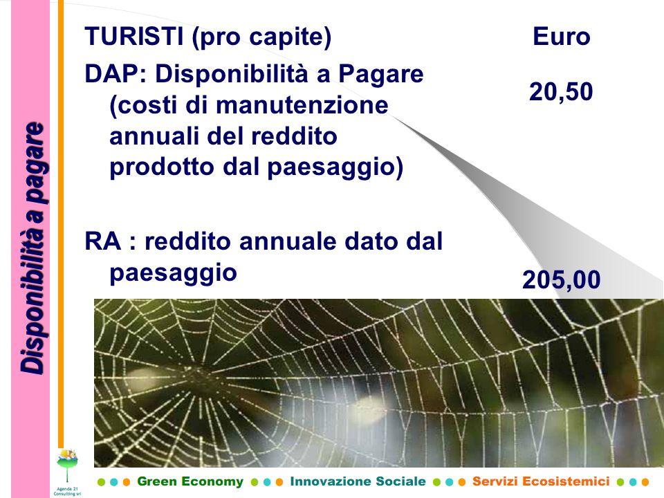 TURISTI (pro capite) DAP: Disponibilità a Pagare (costi di manutenzione annuali del reddito prodotto dal paesaggio) RA : reddito annuale dato dal paes