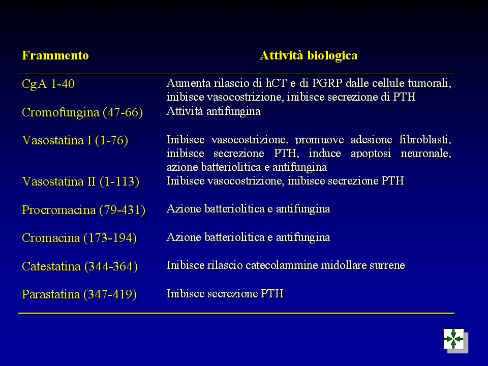Azioni biologiche della pancreastatina (CgA 240-288) l Inibizione secrezione di insulina l Riduzione uptake muscolare di glucosio l Stimolazione glicogenolisi epatica l Inibizione secrezione amilasi pancreatica l Inibizione secrezione acida cellule parietali gastriche l Inibizione secrezione di PTH l Inibizione secrezione di insulina l Riduzione uptake muscolare di glucosio l Stimolazione glicogenolisi epatica l Inibizione secrezione amilasi pancreatica l Inibizione secrezione acida cellule parietali gastriche l Inibizione secrezione di PTH } } Iperglicemia