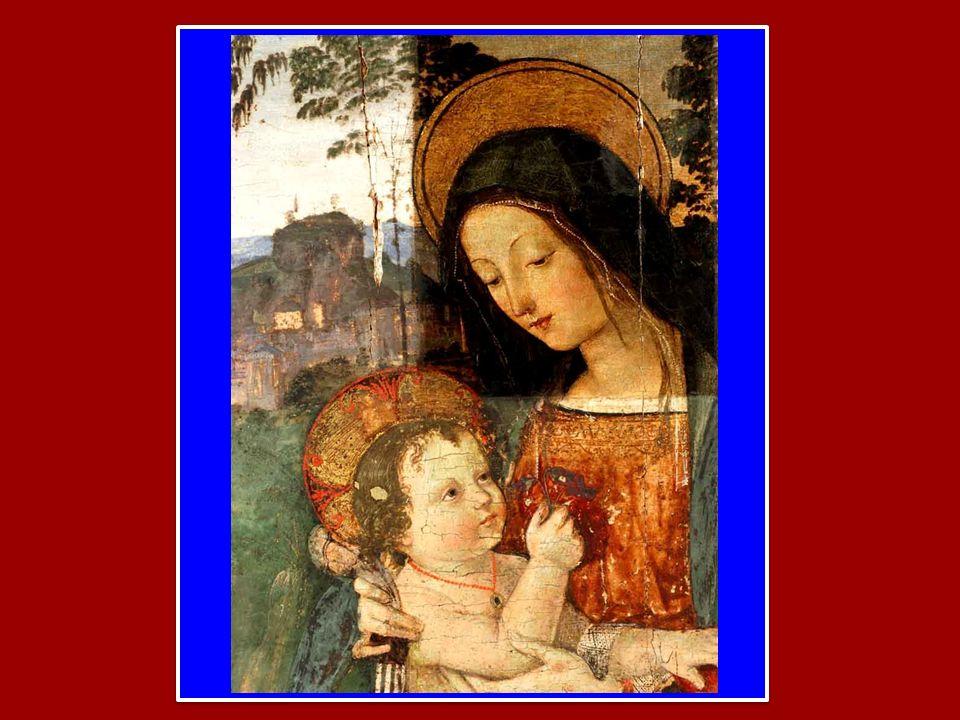 Regina Angelorum, ora pro nobis Regina Patriarcharum, ora pro nobis Regina Prophetarum, ora pro nobis Regina Apostolorum, ora pro nobis Regina Martyru