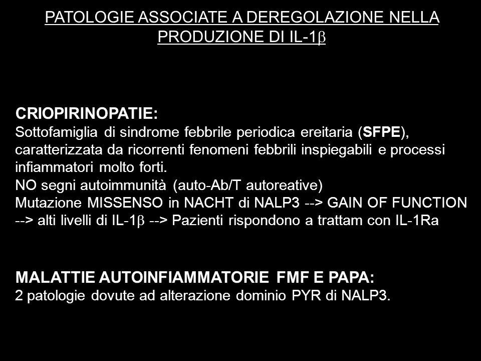 PATOLOGIE ASSOCIATE A DEREGOLAZIONE NELLA PRODUZIONE DI IL-1 CRIOPIRINOPATIE: Sottofamiglia di sindrome febbrile periodica ereitaria (SFPE), caratteri
