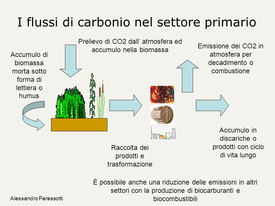 Alessandro Peressotti I flussi di carbonio nel settore primario Prelievo di CO2 dall atmosfera ed accumulo nella biomassa Accumulo di biomassa morta s