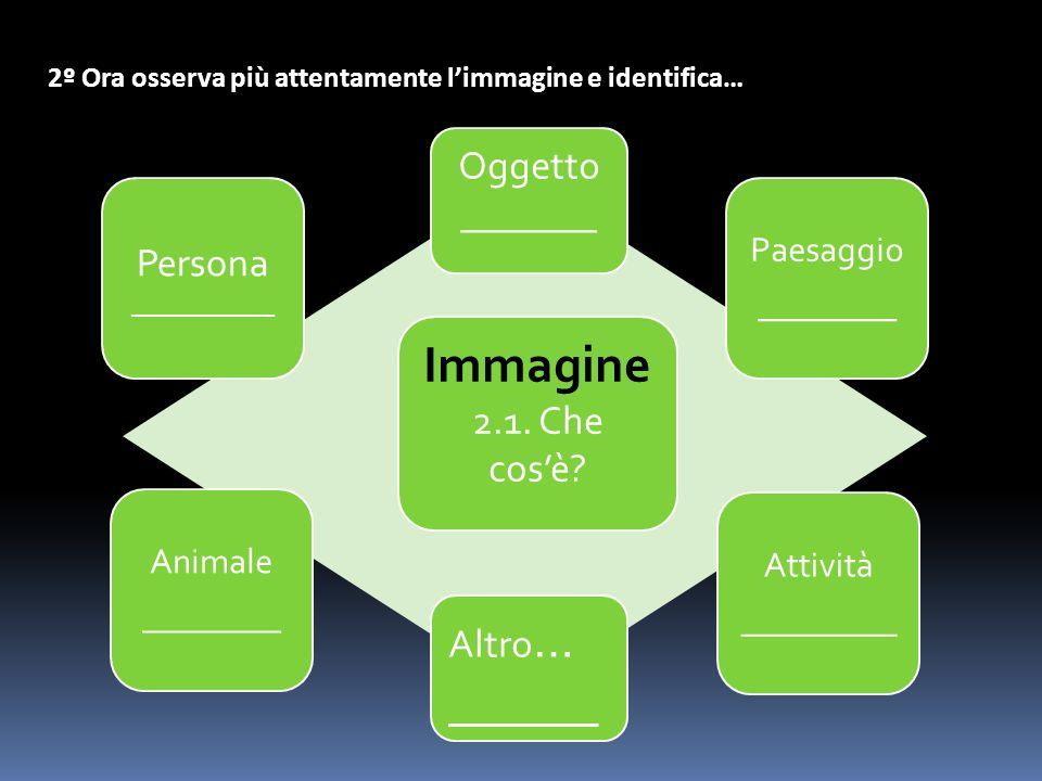 2º Ora osserva più attentamente limmagine e identifica… Immagine 2.1.
