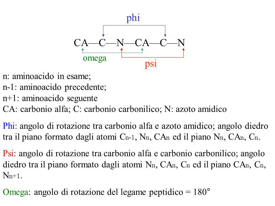 CACNCACN phi psi omega n: aminoacido in esame; n-1: aminoacido precedente; n+1: aminoacido seguente CA: carbonio alfa; C: carbonio carbonilico; N: azo