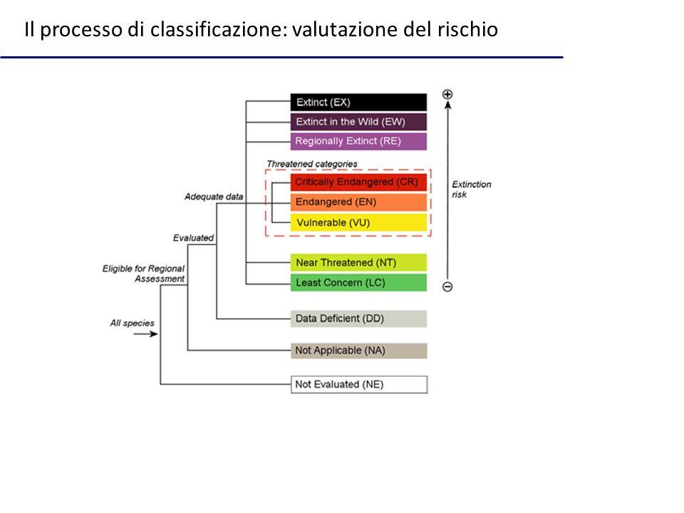 Il processo di classificazione: valutazione del rischio