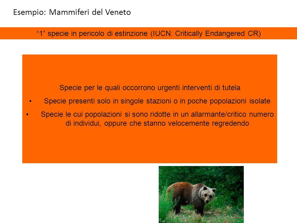 1 specie in pericolo di estinzione (IUCN: Critically Endangered CR) Specie per le quali occorrono urgenti interventi di tutela Specie presenti solo in