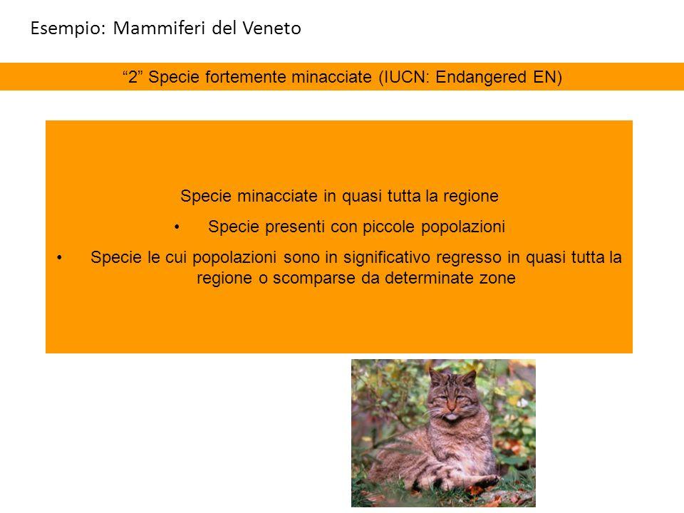 2 Specie fortemente minacciate (IUCN: Endangered EN) Specie minacciate in quasi tutta la regione Specie presenti con piccole popolazioni Specie le cui