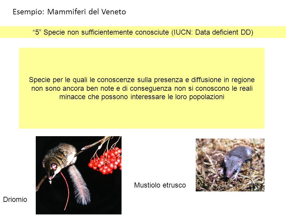 5 Specie non sufficientemente conosciute (IUCN: Data deficient DD) Specie per le quali le conoscenze sulla presenza e diffusione in regione non sono a