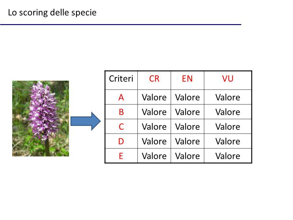 CriteriCRENVU AValore B C D E Lo scoring delle specie