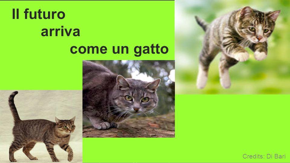 ICTP 13 19 Il futuro arriva come un gatto Credits: Di Bari