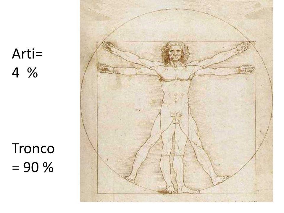 Arti= 4 % Tronco = 90 %