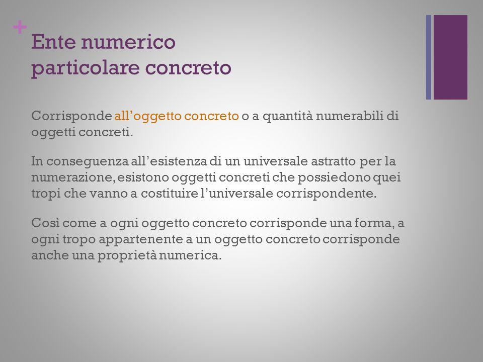 + Ente numerico particolare concreto Corrisponde alloggetto concreto o a quantità numerabili di oggetti concreti. In conseguenza allesistenza di un un