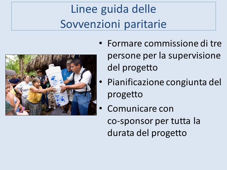 Linee guida delle Sovvenzioni paritarie Formare commissione di tre persone per la supervisione del progetto Pianificazione congiunta del progetto Comu