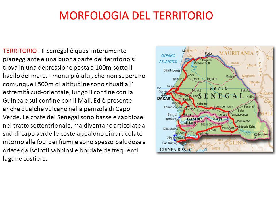 TERRITORIO : Il Senegal è quasi interamente pianeggiante e una buona parte del territorio si trova in una depressione posta a 100m sotto il livello de