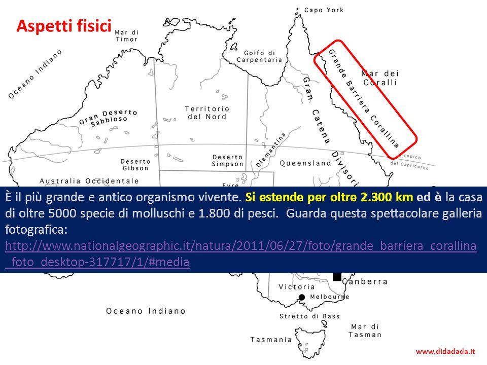 Al largo della costa nord-orientale si allunga la Grande Barriera Corallina, una delle maggiori del pianeta È il più grande e antico organismo vivente