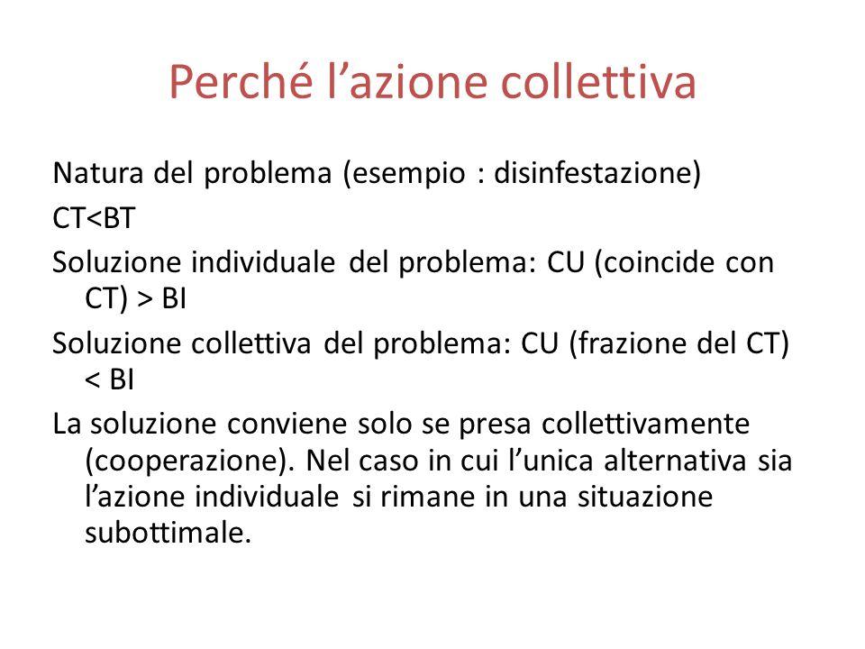 Perché lazione collettiva Natura del problema (esempio : disinfestazione) CT<BT Soluzione individuale del problema: CU (coincide con CT) > BI Soluzione collettiva del problema: CU (frazione del CT) < BI La soluzione conviene solo se presa collettivamente (cooperazione).