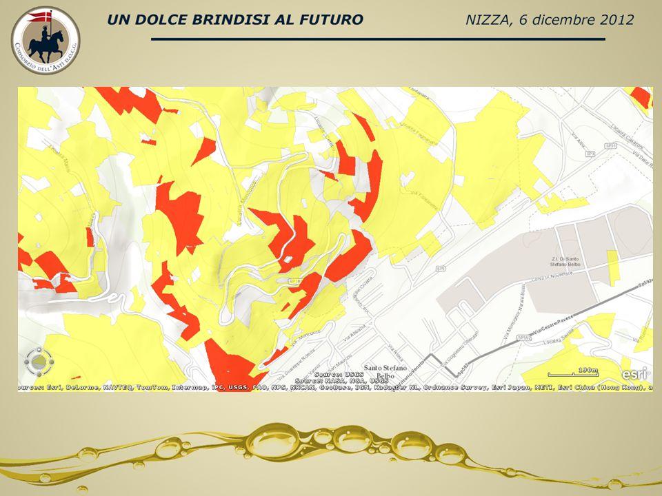 SUPERFICIE VITATA SORI PER COMUNE Santo Stefano Belbo 74,421,8% Cossano Belbo 42,812,5% Camo 21,06,1% Mango 19,95,8% Loazzolo 19,15,6% Vesime 15,84,6% Castiglione Tinella 13,84,1% Calosso 13,74,0% Canelli 12,43,6% Bubbio 10,73,2% Cassinasco 10,43,0% Trezzo Tinella 9,92,9% Neviglie 8,92,6% Cessole 7,42,2% Castino 6,61,9% Monastero Bormida 5,81,7% Sessame 5,21,5% Bistagno 4,91,4% Rocchetta Palafea 4,11,2% Treiso 3,71,1% Perletto 3,41,0%