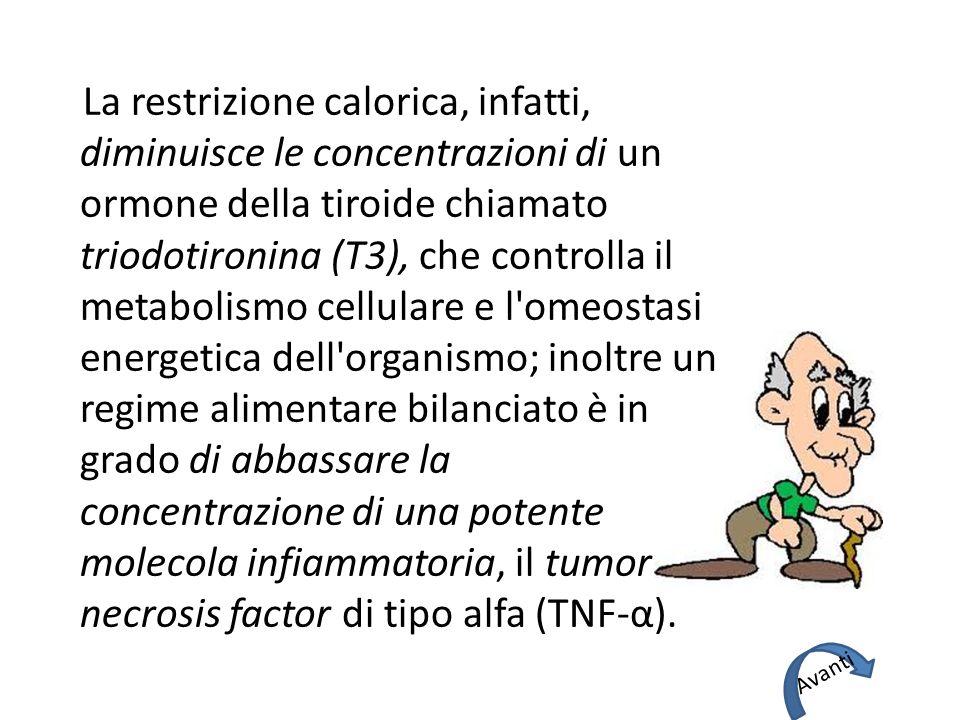 La restrizione calorica, infatti, diminuisce le concentrazioni di un ormone della tiroide chiamato triodotironina (T3), che controlla il metabolismo c