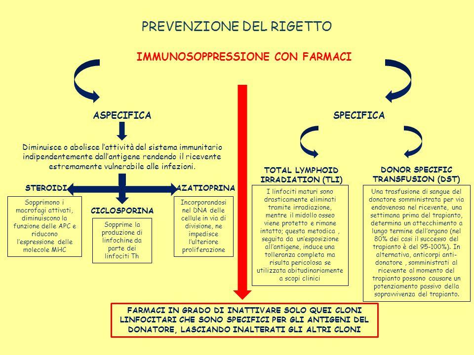 PREVENZIONE DEL RIGETTO IMMUNOSOPPRESSIONE CON FARMACI FARMACI IN GRADO DI INATTIVARE SOLO QUEI CLONI LINFOCITARI CHE SONO SPECIFICI PER GLI ANTIGENI