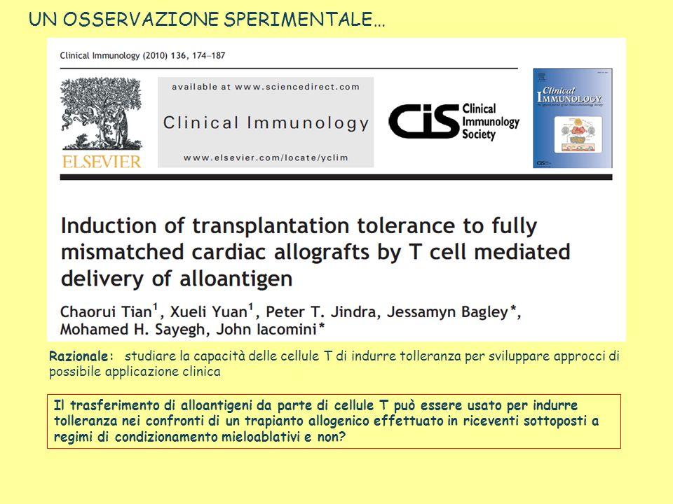 UN OSSERVAZIONE SPERIMENTALE… Razionale: studiare la capacità delle cellule T di indurre tolleranza per sviluppare approcci di possibile applicazione