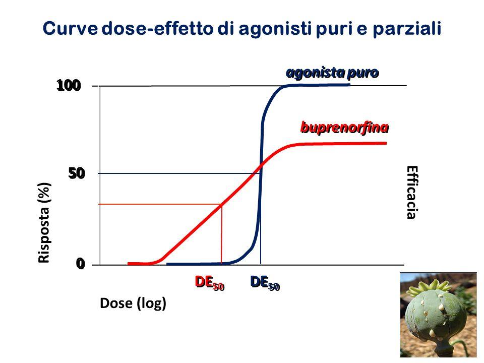 Curve dose-effetto di agonisti puri e parziali 0 0 100 50 agonista puro buprenorfina DE 50 Efficacia Dose (log) Risposta (%)