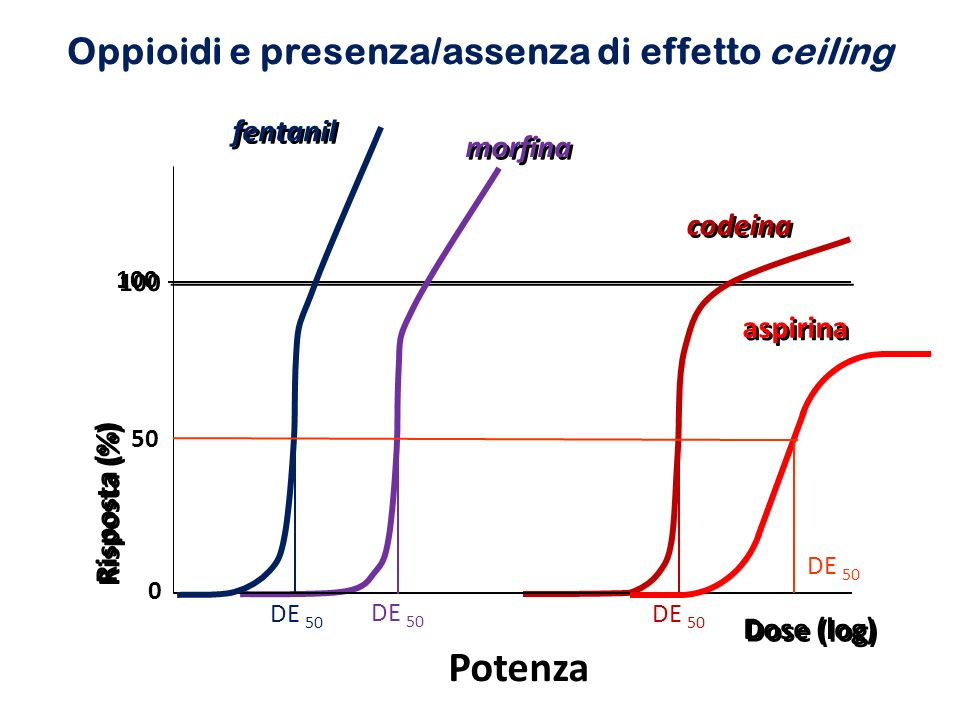 Short-acting opioids VS Codeine Hydromorphone Morphine Oxycodone Tramadol Long-acting opioids Methadone Morphine CR Oxycodone CR Fentanyl transdermal Tapentadol CR Moderate opioids VS Strong opioids Codeine Tramadol Hydromorphone Morphine Oxycodone Methadone Fentanyl