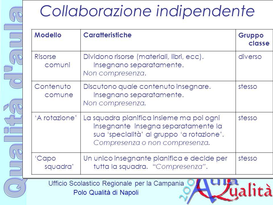 Ufficio Scolastico Regionale per la Campania Polo Qualità di Napoli Collaborazione indipendente ModelloCaratteristicheGruppo classe Risorse comuni Div