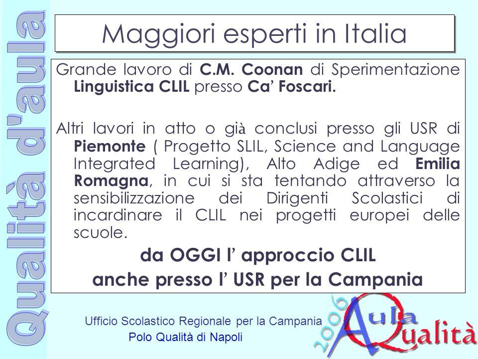 Ufficio Scolastico Regionale per la Campania Polo Qualità di Napoli Maggiori esperti in Italia Grande lavoro di C.M. Coonan di Sperimentazione Linguis