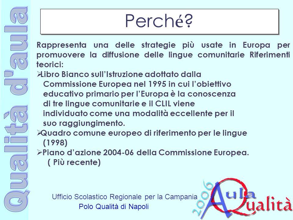 Ufficio Scolastico Regionale per la Campania Polo Qualità di Napoli Rappresenta una delle strategie più usate in Europa per promuovere la diffusione d