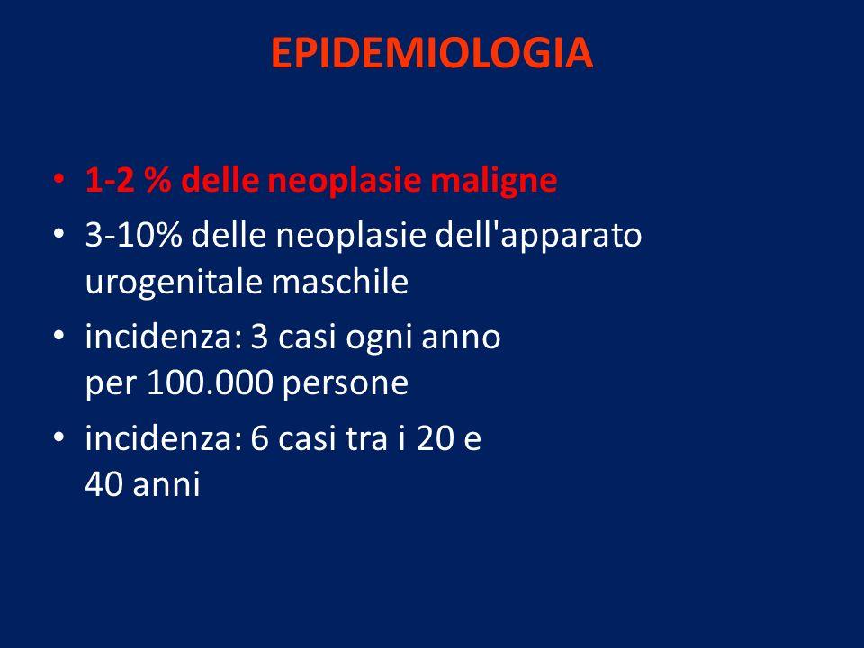 EPIDEMIOLOGIA 1-2 % delle neoplasie maligne 3-10% delle neoplasie dell'apparato urogenitale maschile incidenza: 3 casi ogni anno per 100.000 persone i