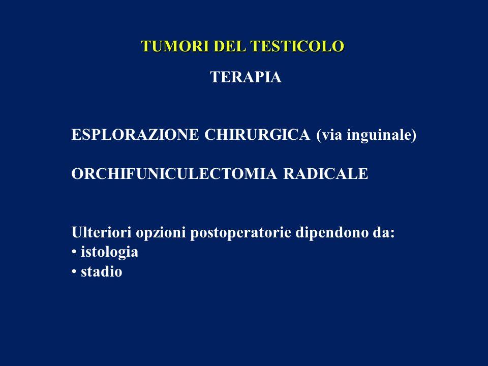 TUMORI DEL TESTICOLO TERAPIA ESPLORAZIONE CHIRURGICA (via inguinale) ORCHIFUNICULECTOMIA RADICALE Ulteriori opzioni postoperatorie dipendono da: istol