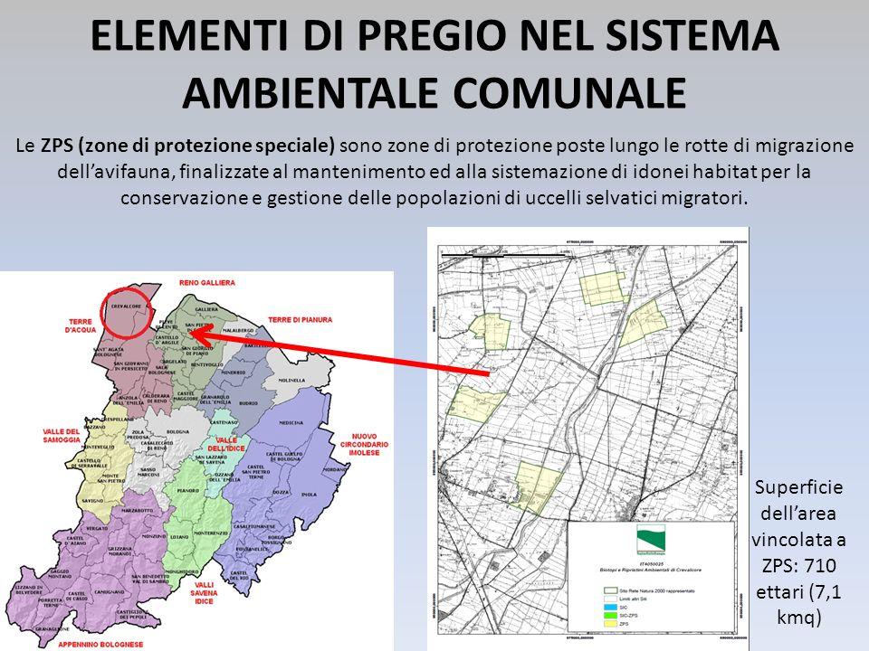 Superficie dellarea vincolata a ZPS: 710 ettari (7,1 kmq) ELEMENTI DI PREGIO NEL SISTEMA AMBIENTALE COMUNALE Le ZPS (zone di protezione speciale) sono