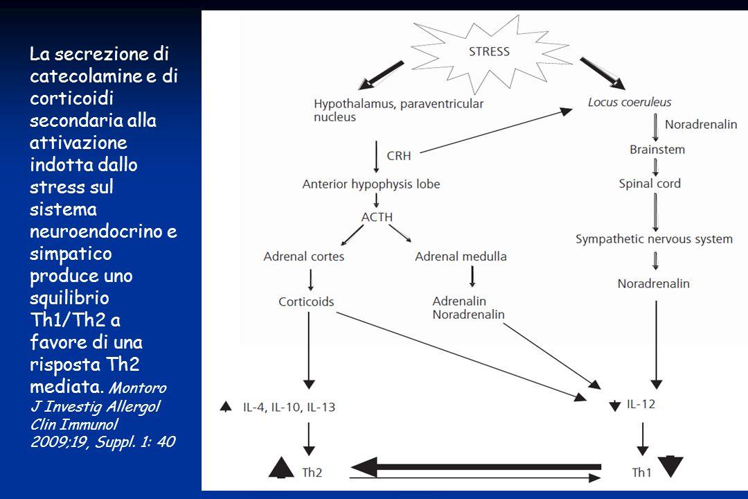 La secrezione di catecolamine e di corticoidi secondaria alla attivazione indotta dallo stress sul sistema neuroendocrino e simpatico produce uno squi