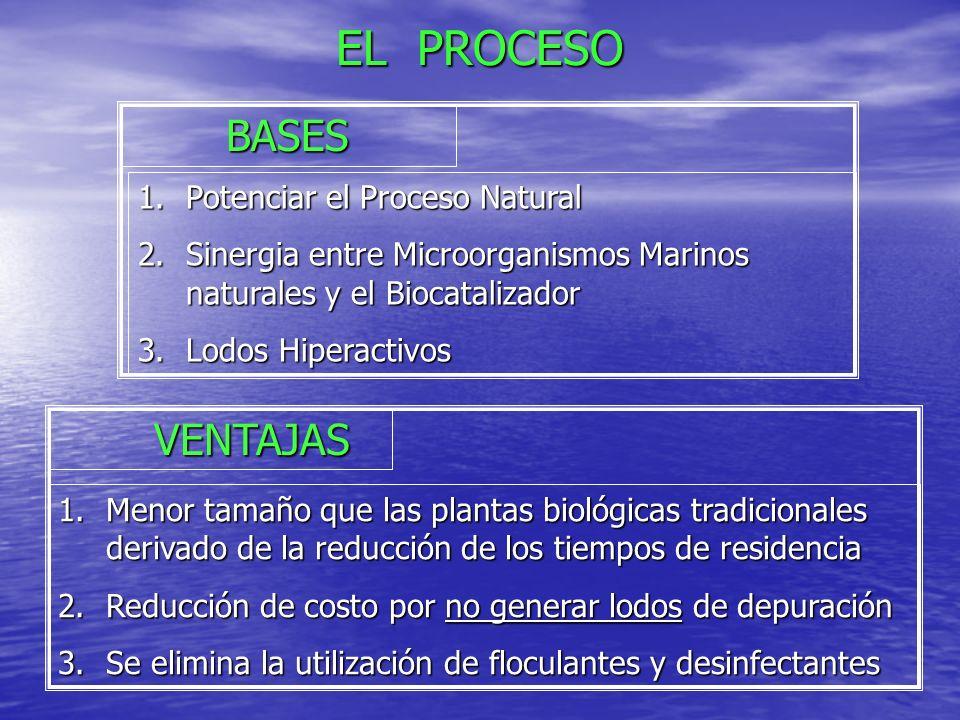 DEPURACIÓN BIOCATALÍTICA 1.Desintoxicación: Homogenización Homogenización Pre-aireación dinámica Pre-aireación dinámica Bio-eliminación de tóxicos Bio-eliminación de tóxicos 2.Oxidación 3.Sedimento y recírculo de lodos ETAPAS DEL PROCESO