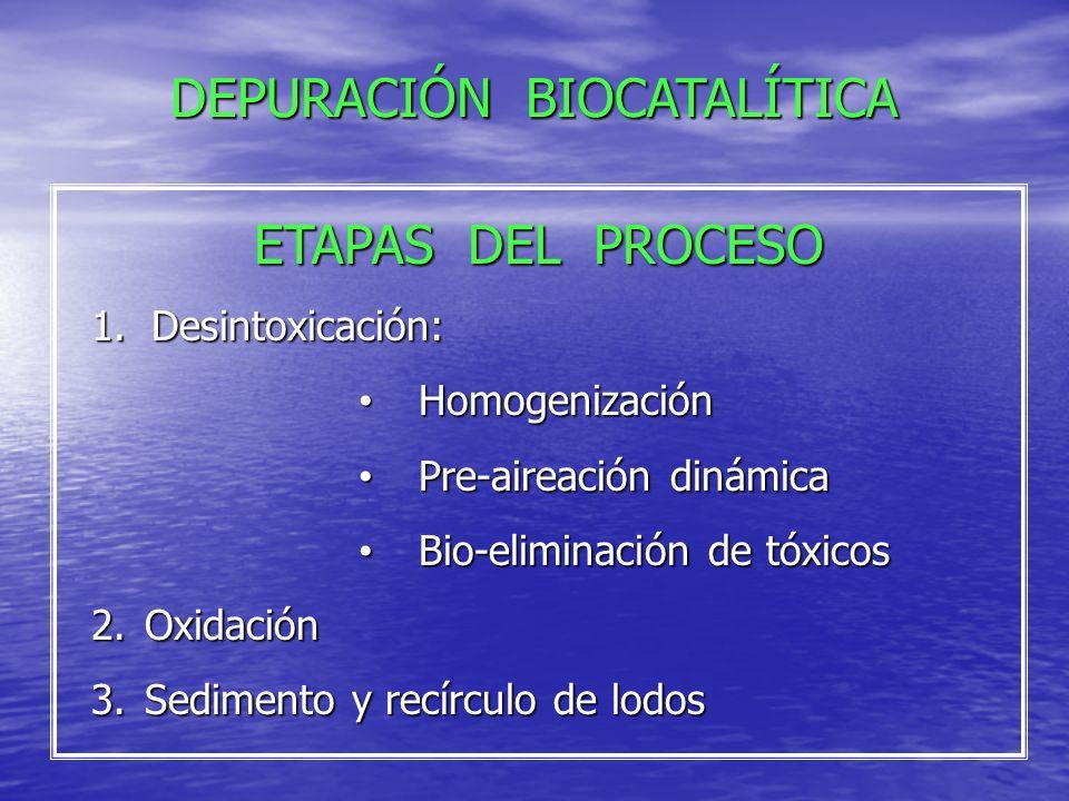 Desintoxicación Sedimentación de lodos Digestión Aeróbica Agua Reciclada Biocatalizador Compuesto de Bacterias y Nutrientes Inyección de Aire Aireación Aireación Recírculo de Lodos DEPURACIÓN BIOCATALÍTICA